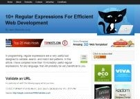 10  regular expressions for efficient web development