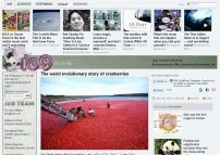 The weird evolutionary story of cranberries